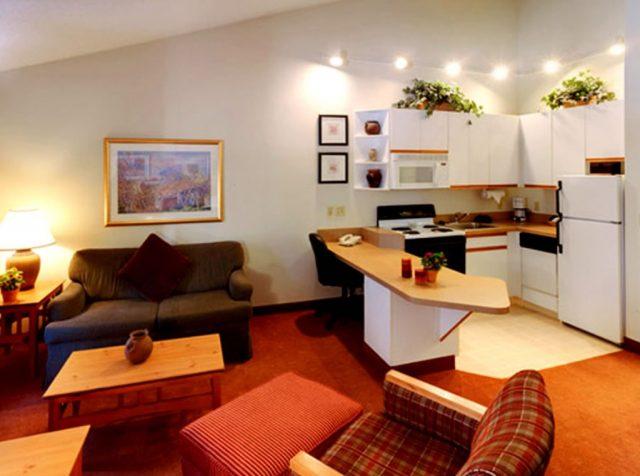 дизайн кухни гостиной студии фото